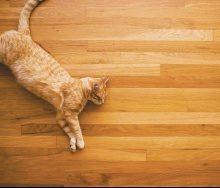 Що таке тепла підлога?