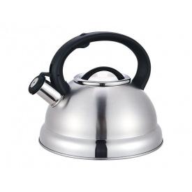 Чайник EDENBERG EB-1347