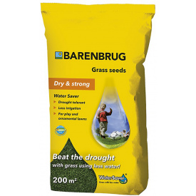 Семена Barenbrug Dry&Strong 5кг (BDS5)