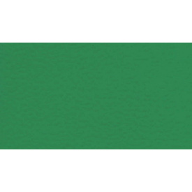 Спортивний лінолеум Gerflor Sport M Comfort 6570 Mint Green