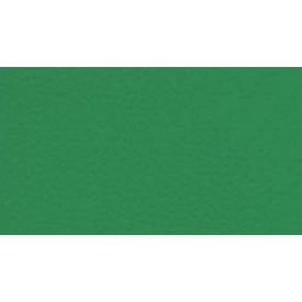 Спортивний лінолеум Gerflor Sport M Performance 6570 Mint Green