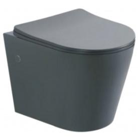 Унітаз підвісний ASIGNATURA Axiom Rimless з сидінням, сірий, матовий 97802806