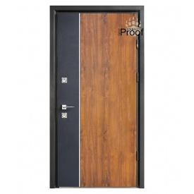 Дверь Страж Party BZ