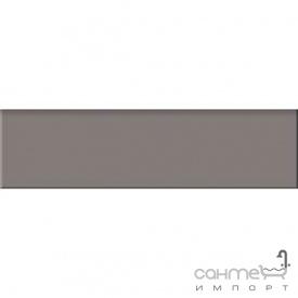 Плитка плінтус 29,8x8 RAKO Taurus Color TSAJB019 19 S Black