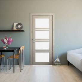 Двері RODOS Modern Quadro зі склом