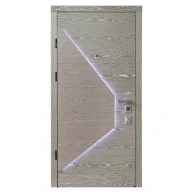 Дверь Страж Collection-20 Vesta