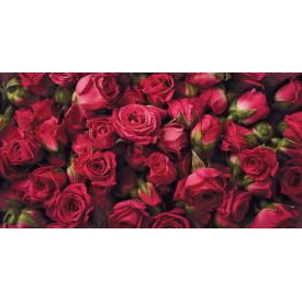 Фотообои Престиж Алые розы №55