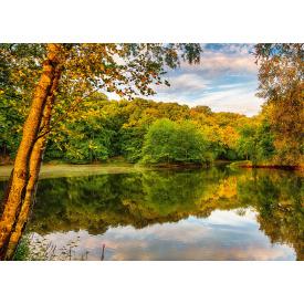 Фотообои Престиж Озеро в лесу №24