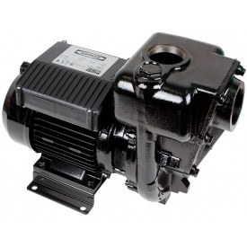 Насос для перекачки дизельного топлива Piusi Е300 220-550