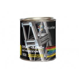 Грунтовка антикоррозионная быстросохнущая Colorina Рапид 0,9 кг серая