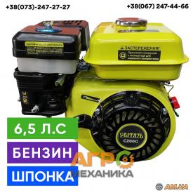 Двигун Світязь C200G