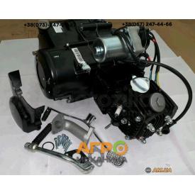 Двигатель на мопед Delta/Alpha/Active 110 cc механическое сцепление (Matte blake) VIP
