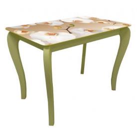 Стол обеденный стеклянный на деревянных ножках Классик 203 фотопечать