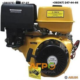 Двигун Forte F190
