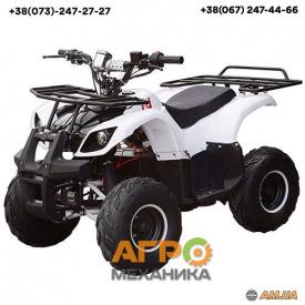 Электроквадроцикл Profi HB-EATV 1000D-1 (MP3) 1000W/48V