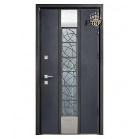 Дверь Страж Space SL