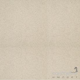 Плитка напольная полированная 59,8x59,8 RAKO Taurus Granit TAL61073 73 SL Nevada 595