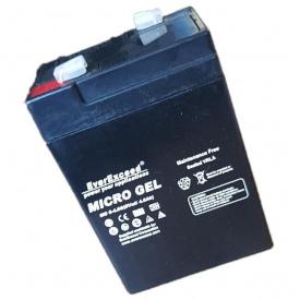 Аккумуляторная батарея EverExceed MG 6-4.5G