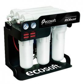 Система очищення води Ecosoft Robust 80 л / год