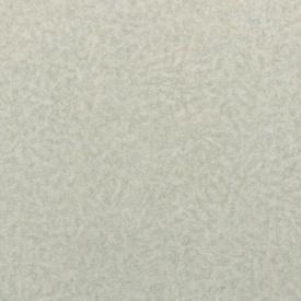 Коммерческий линолеум LG Hausys Durable 99901 01