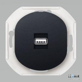 Розетка USB Aling-Conel EON E6162E1 черная с заземлением