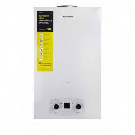 Газовая колонка Thermo Alliance дымоходная JSD20-10QB EURO 10 л