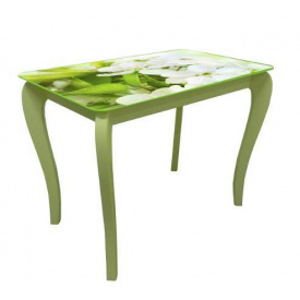 Стол обеденный стеклянный на деревянных ножках Классик 030 стекло 10 мм фотопечать