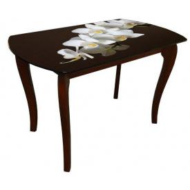 Стол обеденный стеклянный на деревянных ножках Классик 4 0198 фотопечать