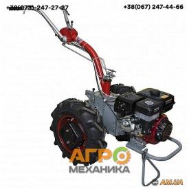 Мотоблок Мотор Січ МБ-9