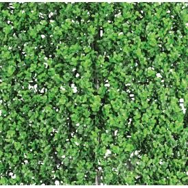 Декоративное зеленое покрытие Engard Самшит 50x50 см