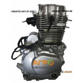 Двигатель на грузовой трицикл CG-250 (163 FMM) Zubr/Musstang/Spark 250 cм3