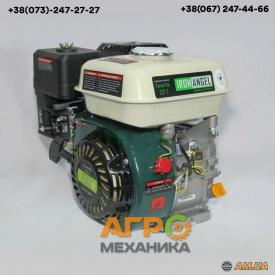 Двигатель Favorite 212-T