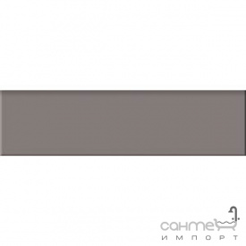 Плитка плинтус 29,8x8 RAKO Taurus Color TSAJB007 07 S Dark Grey