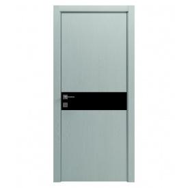 Двері RODOS Modern Flat-02 Alum глухі