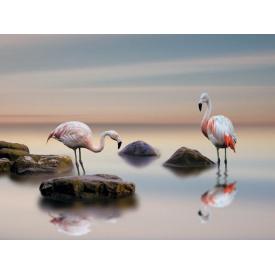 Фотообои Престиж Фламинго №65