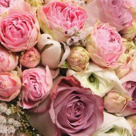 Фотообои Престиж Розы №20