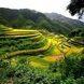 Земельные аферы: Как обезопасить себя и близких от потери собственных соток