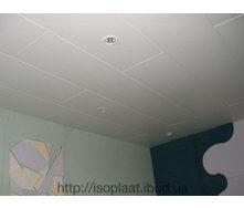 Декоративная панель для потолка Isotex Nordic