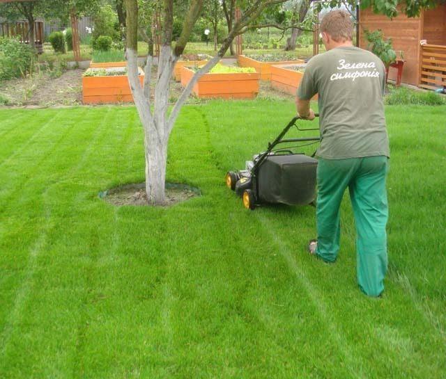 Догляд за садом, секрети догляду