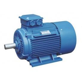 Асинхронный двигатель с короткозамкнутым ротором 250S8 37 кВт