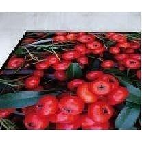 Виготовлення логотипів на килимових покриттях