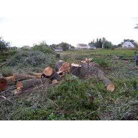 Зрізання дерев і чагарників