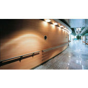 Перфорированная шпонированная панель из MDF Decor Acoustic 30/2 2400*576*17 мм зебрано