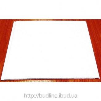 Панель пластиковая 250*6000 мм белая