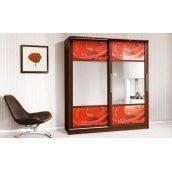 Шкаф-купе Мир мебели Монтре 2Д 200x230x63 см темный венге/роза