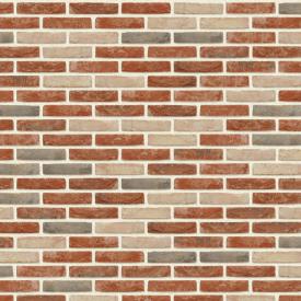 Цегла ручного формування Nelissen Bricks Beguinage Brick WV50 210x100x50 мм