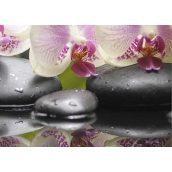 Плитка керамическая BELANI Панно Орхидея 4 35х25 см фисташковый