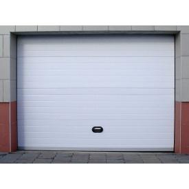 Гаражні секційні ворота DoorHan RSD02 2300х2200 мм