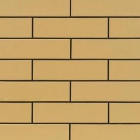 Фасадна плитка Cerrad гладка 245х65х6,5 мм piaskowe