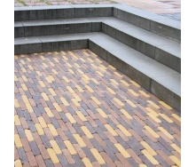 Тротуарная плитка Золотой Мандарин Барселона Антик 186х45х60 мм на сером цементе персиковый